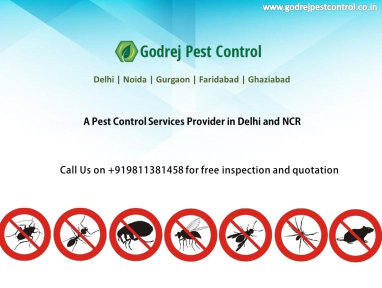 godrej-pest-control-in-noida-delhi-ghaziabad-and-faridabad-call-on-9811381458