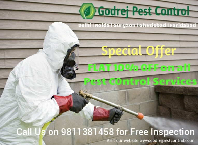 pest-control-noida-delhi-gurgaon-ghaziabad-and-faridabad-9811381458