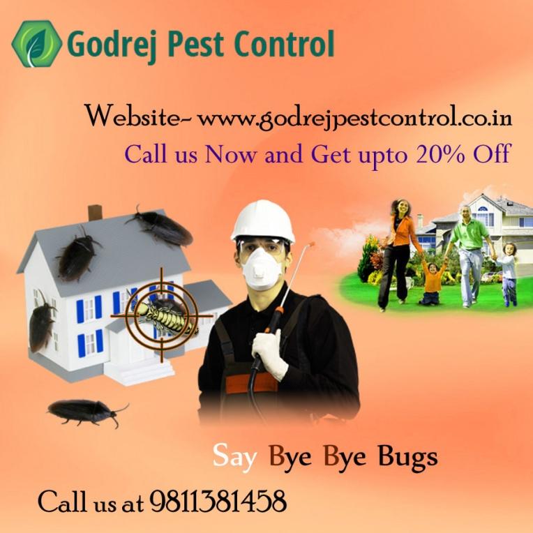 pest-control-11