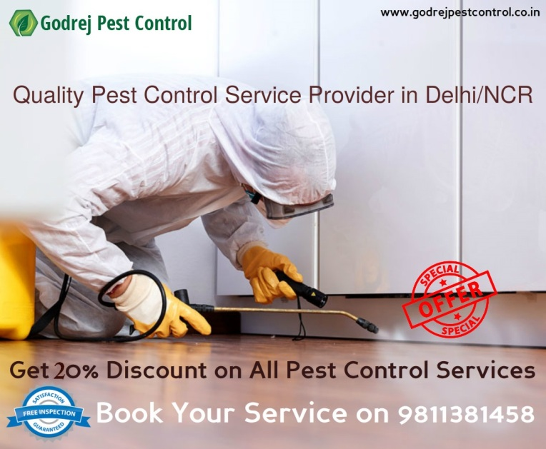 pest-control-in-noida-from-godrej-pest-control-9811381458