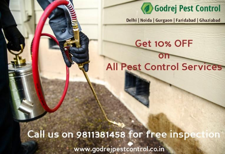 pest-control-noida-godrej-pest-control-9811381458