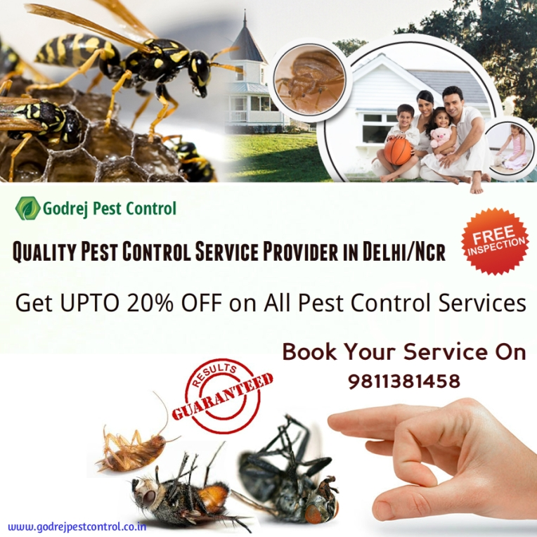 godrej-pest-control-services-in-delhinoidancr-9811381458
