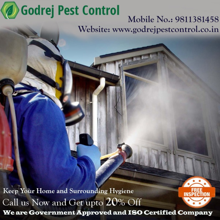 pest control Noida treatment.jpg