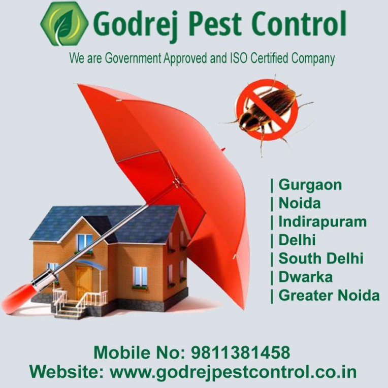 pest control south delhi